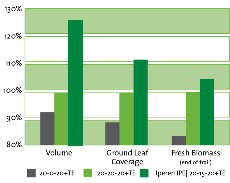Graph showing the Iperen IPE effect on the initial development of lettuce