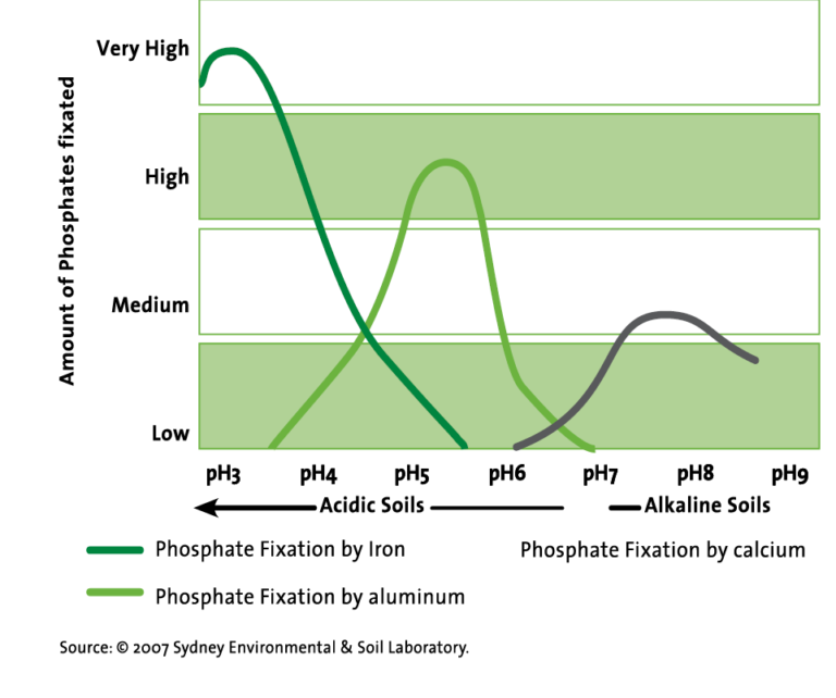 Graph showing Phosphate fixation by Iron, Alumunium and Calcium