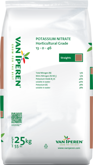 is potassium nitrate soluble in water