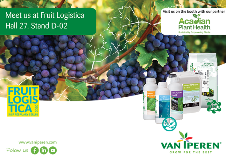 Meet Van Iperen International at Fruit Logistica on 5, 6, and 7 February 2020. Hall 27. Stand D-02.
